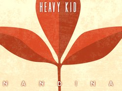 Image for Heavy Kid