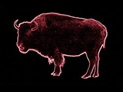 I Am Buffalo