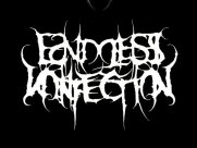 Image for Endless Infection