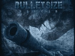 Image for Bulletsize