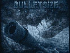Image for Bulletsize