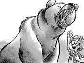 Beware The Bear