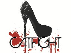 Image for CatFight!