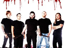 Image for All Shall Perish