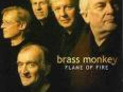 Image for Brass Monkey