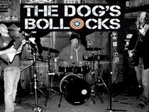 TheDogsBollocksBand