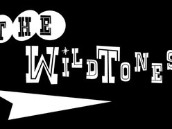 Image for The WildTones