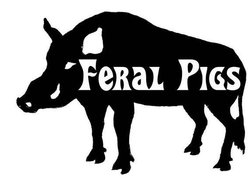 Image for Feral Pigs