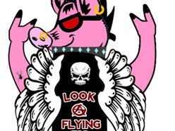Look A Flying Pig