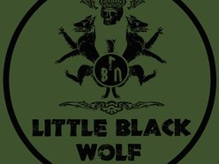 Image for Little Black Wolf