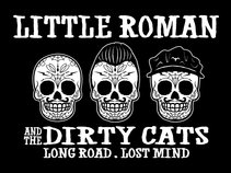 little roman & the dirty cats