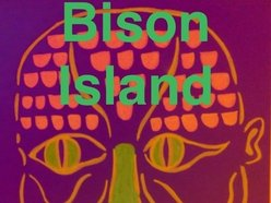 Bison Island