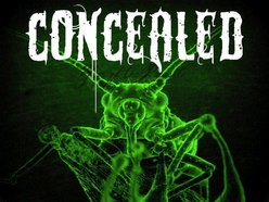 Image for CONCEALED