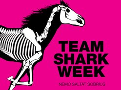 Image for Team Shark Week