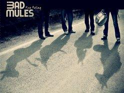 BAD MULES