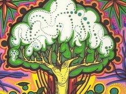 TreeCulture