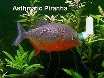 Asthmatic Piranha