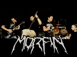 Image for MORFIN