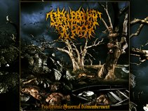 Disfigurement Of Flesh