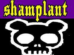 Image for shamplant