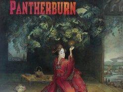 Image for Pantherburn