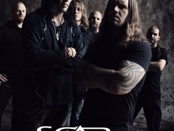 Image for Scar Symmetry