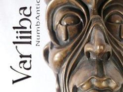 Image for VARLiiBA