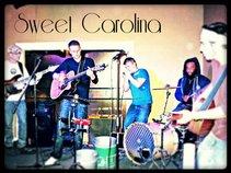 Sweet Carolina 8H