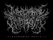 Intracranial Parasite