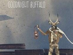 Image for Goodnight Buffalo