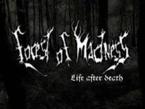 Forest Of Madness