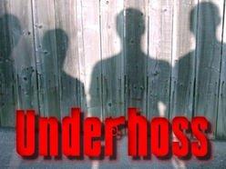 Image for Underhoss