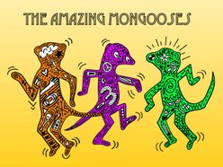 Image for The Amazing Mongooses