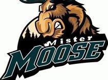 Mister Moose