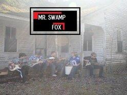 Image for Mr. Swamp Fox
