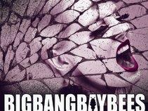 BIGBANGBAYBEES