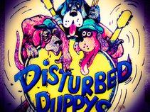 Stash & The Disturbed Puppys