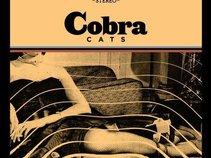 Cobra Cats