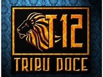 TRIBU12