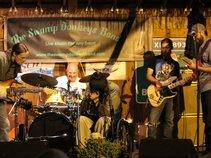 Johnny Wheels & The Swamp Donkeys