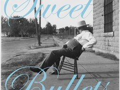 Image for Sweet Bullets