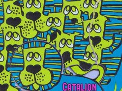 Image for Catalion
