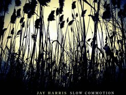 Image for Jay Harris