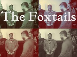 Image for The Foxtails