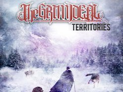 Image for The Grim Ideal