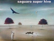 Saguaro*