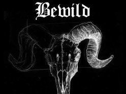 Image for Bewild
