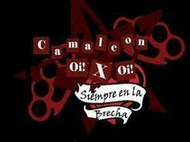 Camaleon Oi