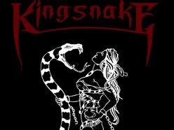 Image for Kingsnake