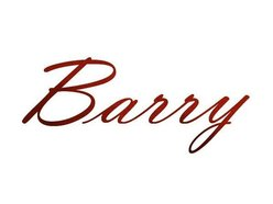 Image for Barry the Witch